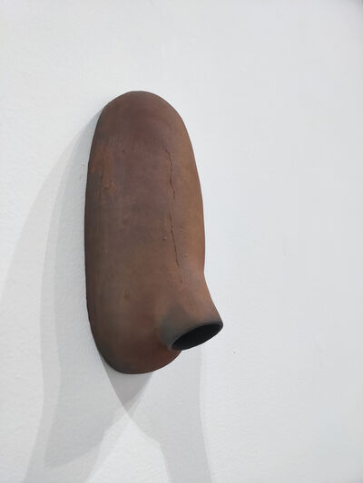 Peter Shelton, 'Steelnoseall', 1983-1999