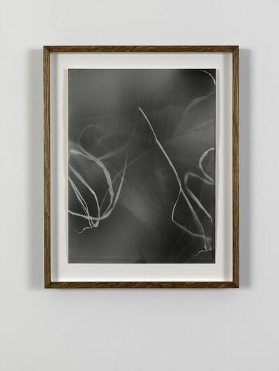 João Penalva, 'Small Weeds from Hiroshima (III)', 1997