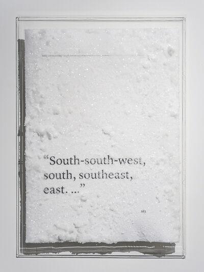 """Cédric Maridet, '""""South-south-west, south, southeast, east. ...""""', 2016"""