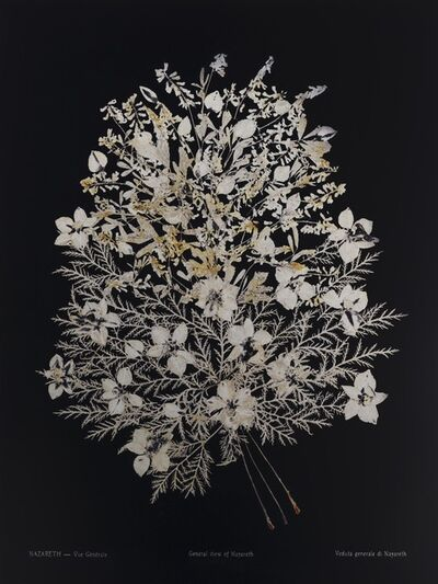 Dor Guez, 'Lilies of the field #3, Nazareth, General viewilies of the field #3, Nazareth, General view', 2019