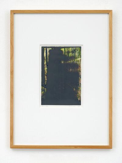 Gerhard Richter, 'Wald II', 2008