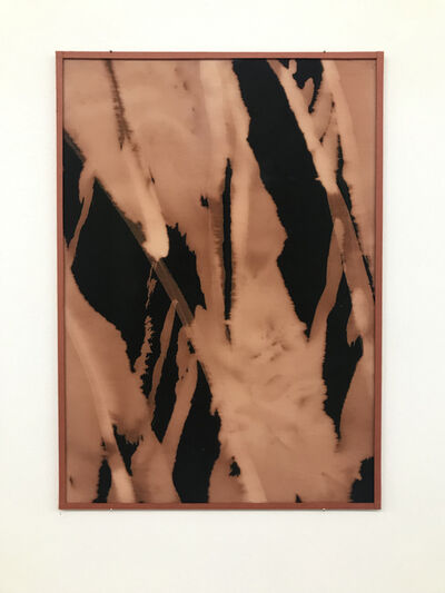 Bélen Rodríguez González, 'Vino tinto', 2019