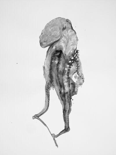 Douglas White, 'Octopus drawing', 2016
