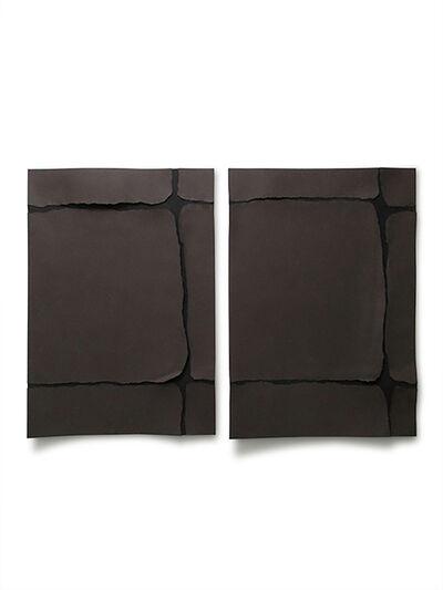Carlo Colli, 'Skin N138+139', 2017