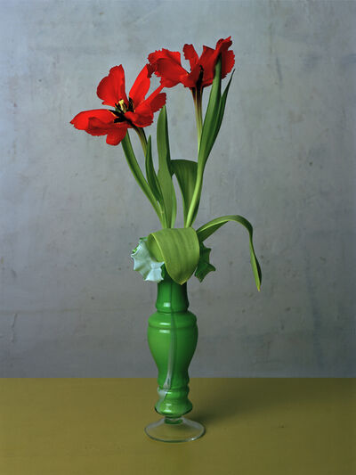 Kris Scholz, 'Flowers 7 | Tulpen', 1993
