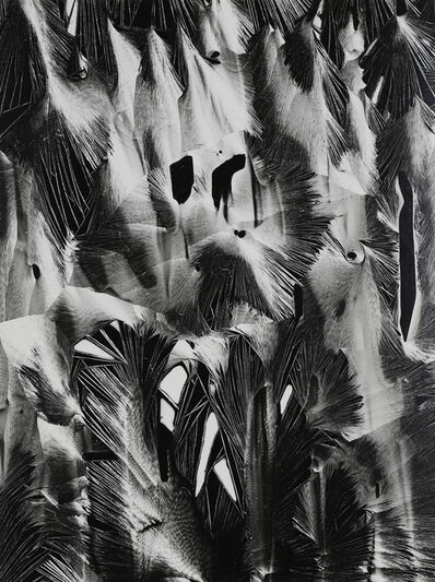 Brett Weston, 'Cracked plastic, Garapatta, 1955', 1955