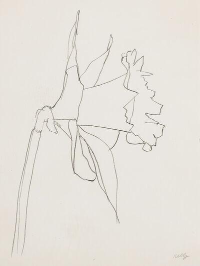 Ellsworth Kelly, 'Daffodil', 1979-1980