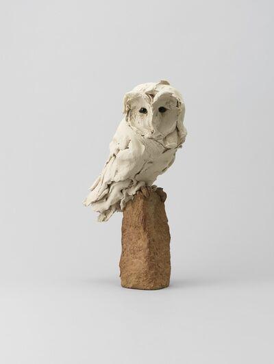 Stephanie Quayle, 'Barn Owl'
