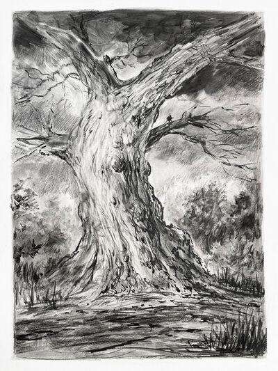 Rick Shaefer, 'Tree Study #2', 2021