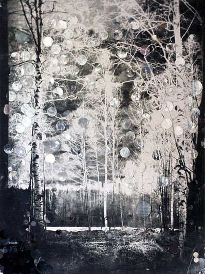 Heli Hiltunen, 'Plywood Patcher's Tale', 2015