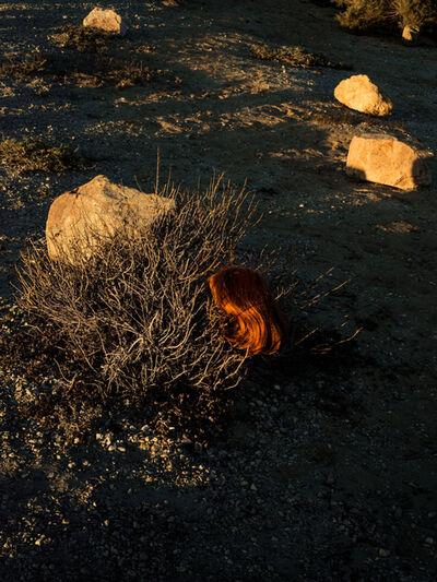 Tania Franco-Klein, 'Wig, Dead Sea', 2017