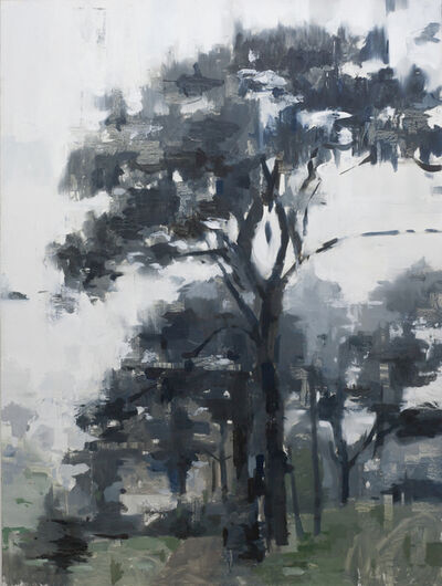 Jon Doran, 'Trees in the Mist 6', 2019