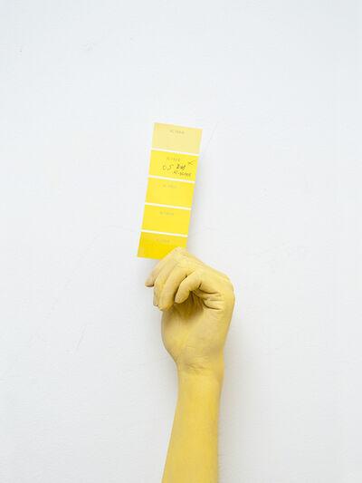Benjamin Li, 'Choice', 2012