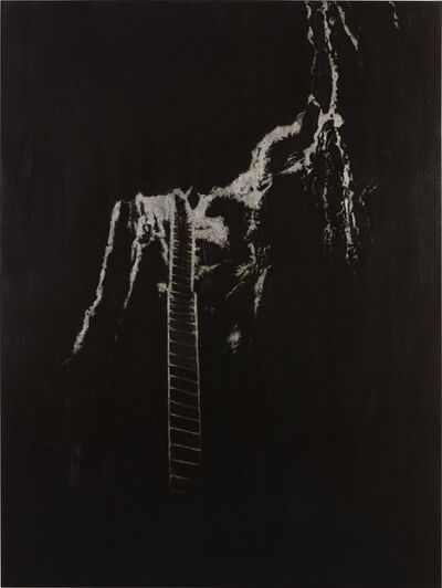 Slater Bradley, 'Down the Gully', 2009