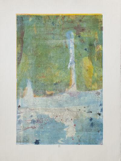 Karin Bruckner, 'TeemingWithLife (Shallow)', 2014