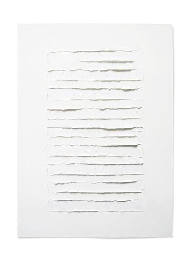 Carlo Colli, 'Skin N104', 2015