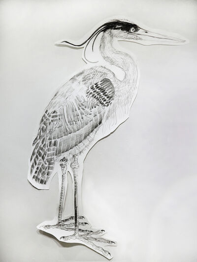 Jules Buck Jones, 'Great Blue Heron (Ardea herodias)', 2019