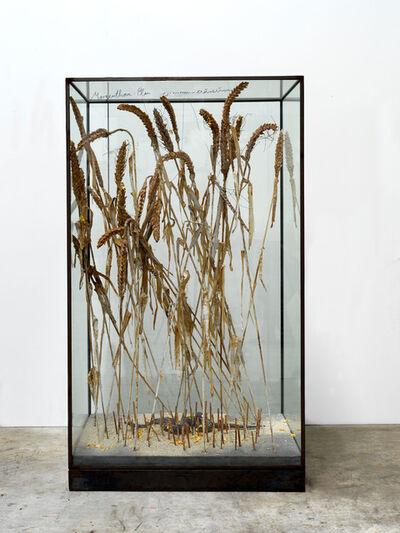 Anselm Kiefer, 'Morgenthau', 2015