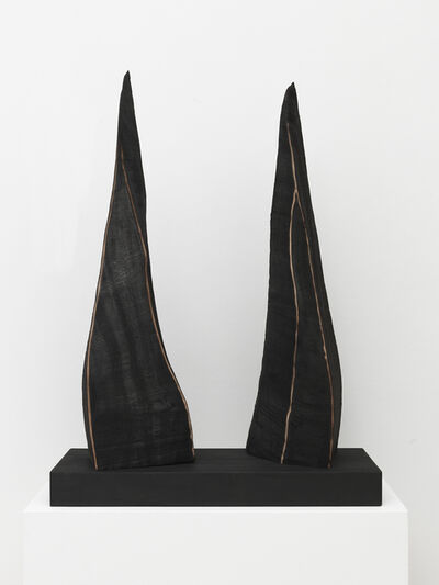David Nash, 'Two Edged Forms', 2020