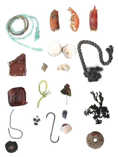 Richelle Gribble, 'Objects of Land and Sea II', 2016