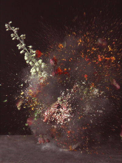 Ori Gersht, 'Time After Time - Untitled No. 31', 2007