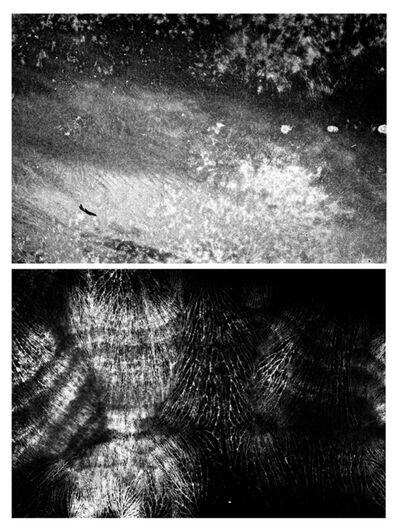 Pedro Victor Brandão, 'Sem título #3 e #4 - da série Dupla Paisagem [Untitled #3 and #4 - Double Landscape series]', 2000/2010