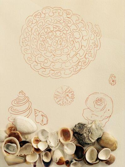 Rosana Ricalde, 'Notas para uma concha (Múltiplo)', 2016