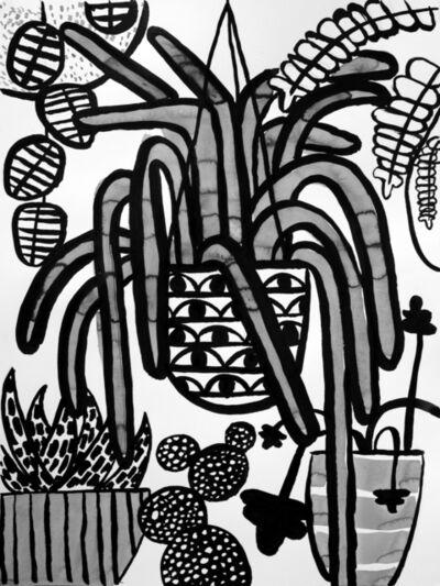 Carissa Potter, 'Hanging Plants', 2020