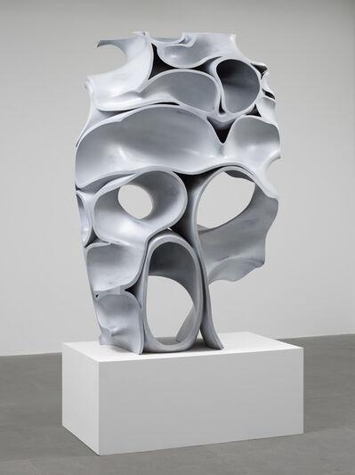Tony Cragg, 'Skull', 2016