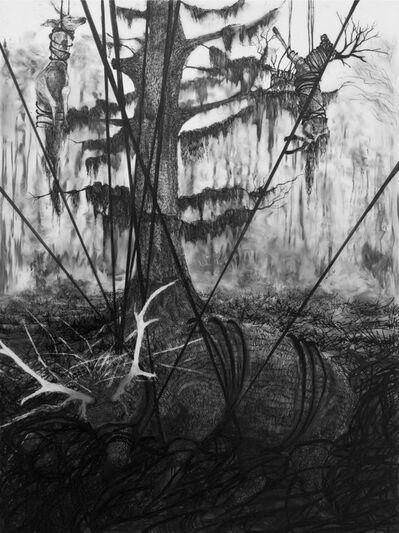 Matt Miley, 'Cypress Grasp / Surface; Cataract Inundate Series', 2013
