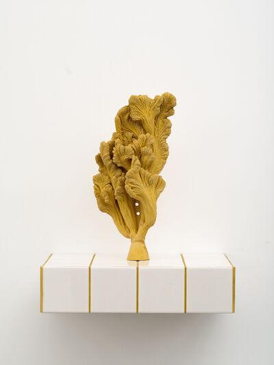 Zhang Ruyi 張如怡, 'Individual Plant–14', 2018
