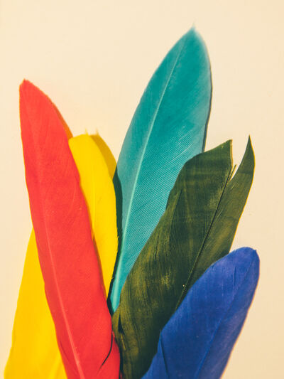 Maria Piessis, 'Feather or Not 1'