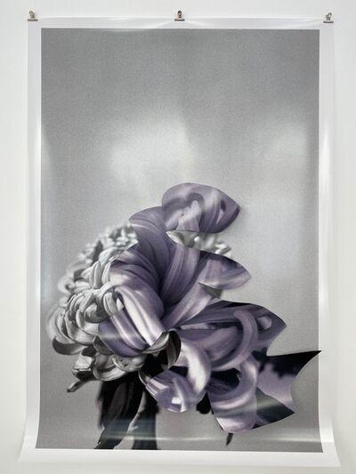 Maria Brunner, 'LILA SCHNIPSEL', 2021