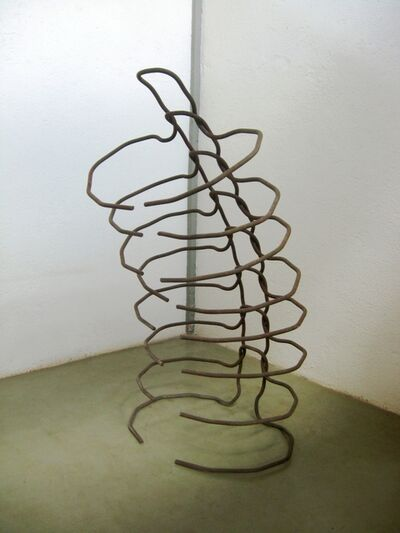 Walter Guerra, 'untitled', 2004