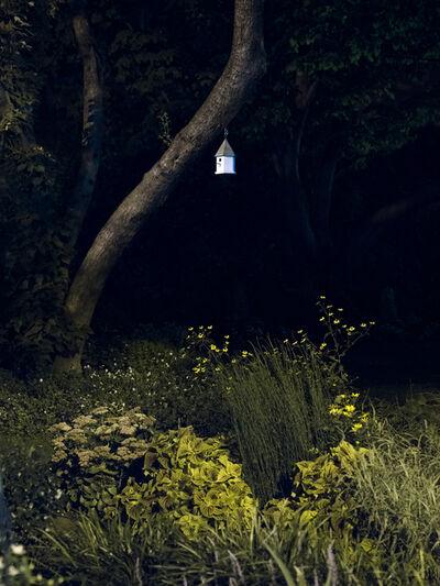 Anna Beeke, 'Midnight in the Garden #51', 2015
