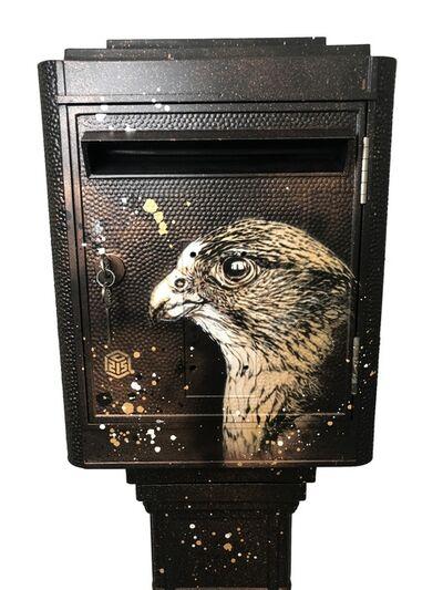 C215, 'Eagle Mailbox', 2018
