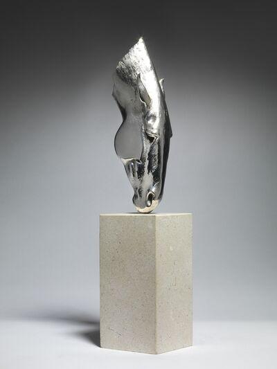 Nic Fiddian-Green, 'Still Water, silver', 2019