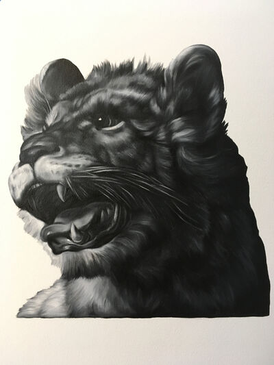 Shelley Reed, 'Lion (after Specht)', 2019