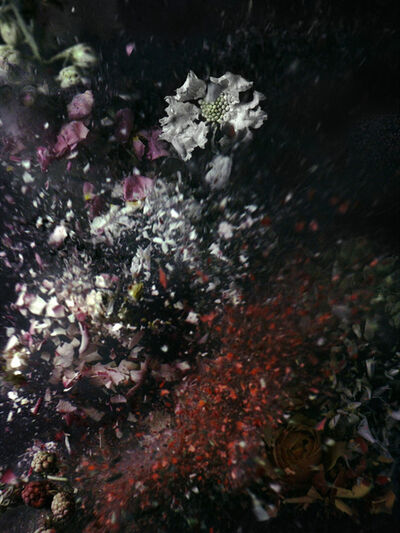 Ori Gersht, 'Time After Time, Untitled 17', 2006