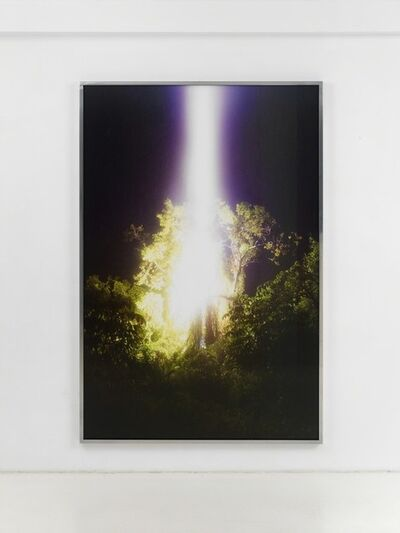 Julius von Bismarck, 'Talking to Thunder (Tree)', 2017