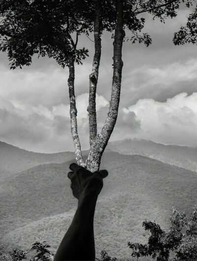 Arno Rafael Minkkinen, 'Halfway Up Mt.Mitchell, Burnsville, North Carolina', 2013