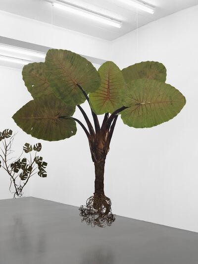 Julius von Bismarck, 'I like the flowers', 2017