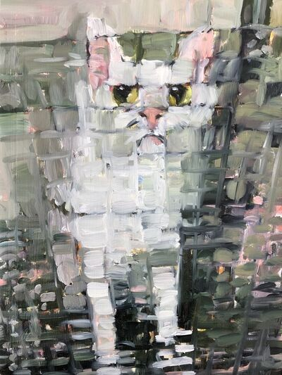 Katherine Bull, 'Cat behind glass', 2020