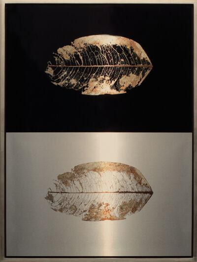 Meridel Rubenstein, 'Suspended Leaf Diptych', 2010
