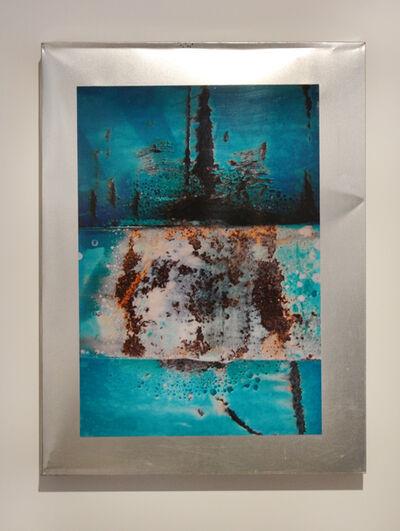 Beth Lambert, 'Under Water Vision', 2012