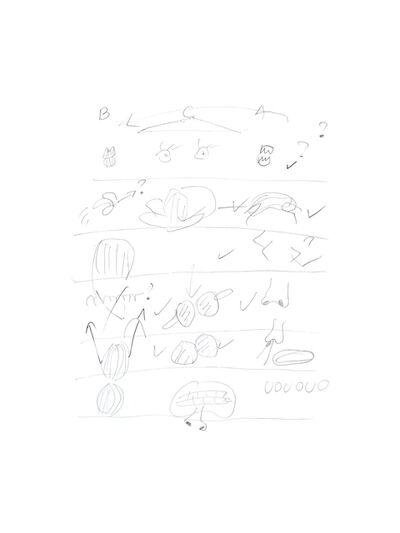 Mercedes Azpilicueta, 'Un Mundo Raro III / Visual Mnemonics ', 2016
