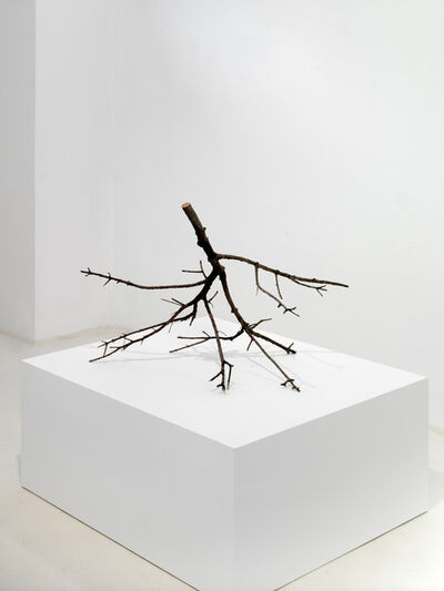 Fabrice Samyn, 'From where to come', 2013