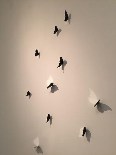 Barnaby Hosking, 'Butterflies (10)', 2015