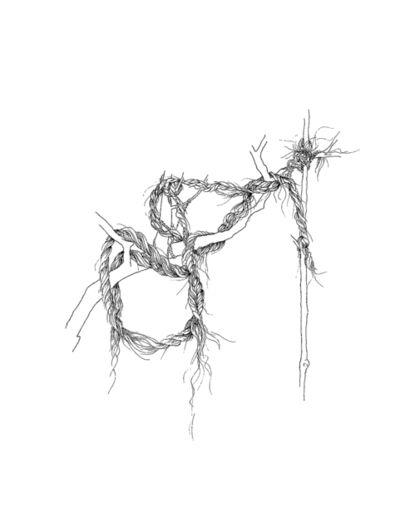 Donna Conlon, 'Ropes and Mangroves #8', 2019