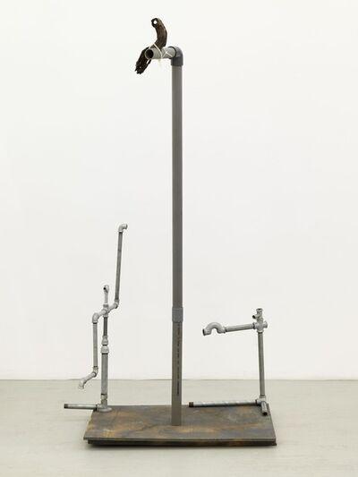 Jimmie Durham, 'Passage', 2011